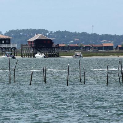 les célèbres cabanes tchanquées sur l'île aux oiseaux
