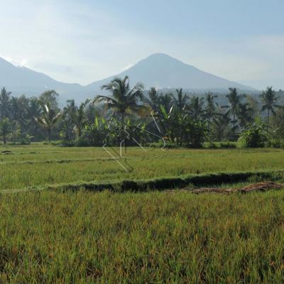 Tôt le matin, les volcans et montagnes ne sont pas dans les nuages