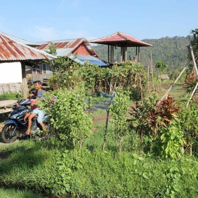 habitations perdues au milieu des rizières