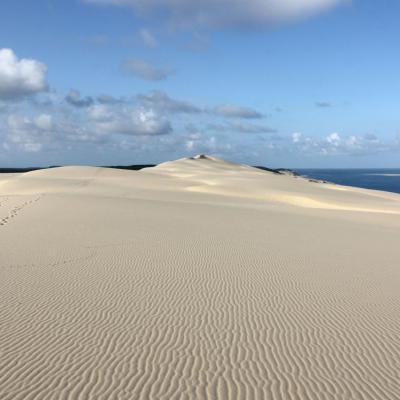 La Dune du Pilat (tôt le matin !)