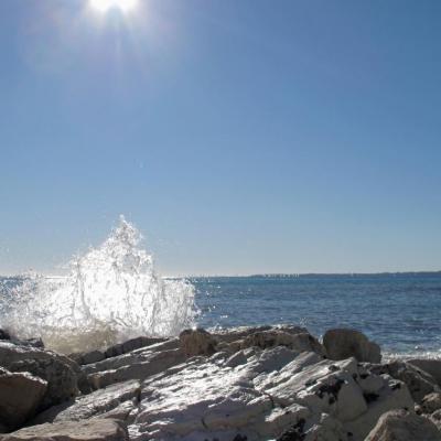 Les rochers sur la digue de Port Gallice (janvier 2009) G10