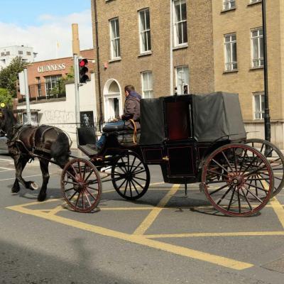 les calèches sont très présentes à Dublin (2)