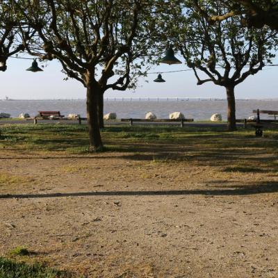Tôt le matin ... pour avoir la marée haute à Chateau d'Oléron