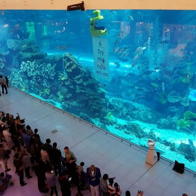 Dans ce mall, le plus grand aquarium du monde (10 millions de litres d'eau)