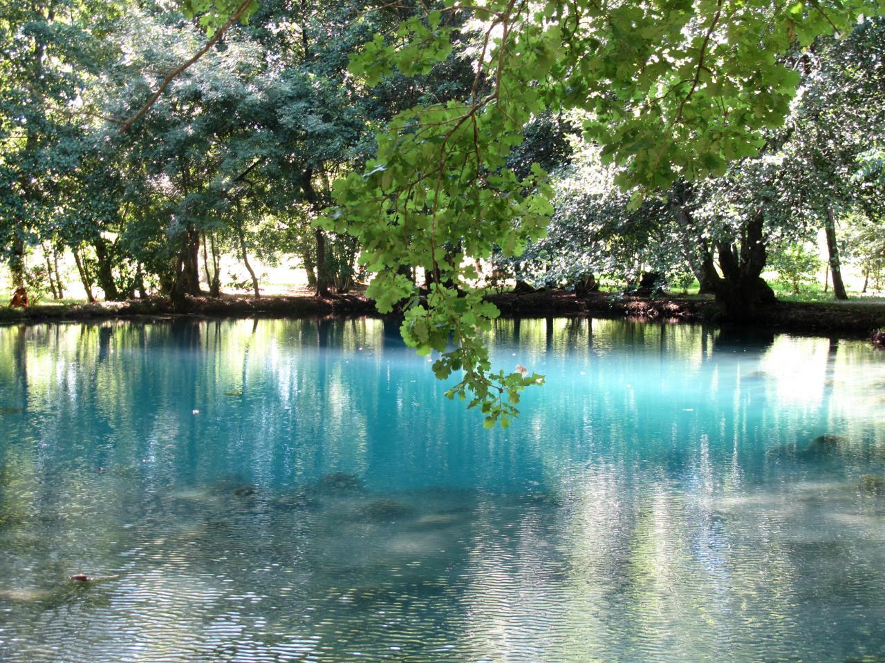 Bleu comme ... La source bleue du château de Beaulon (17)