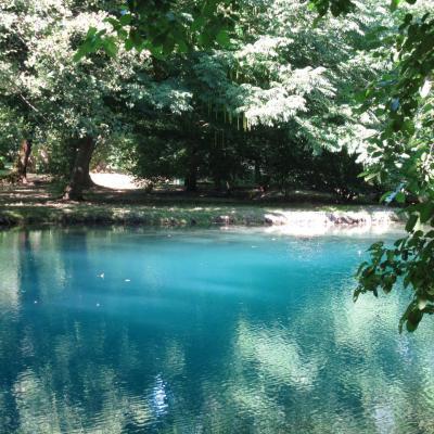 Bleu comme ... La source bleue du Château de Beaulon (Royan)