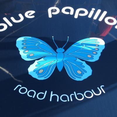Bleu comme ... ce papillon bleu ! à Port Vauban (Antibes)
