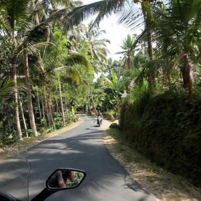 Bali 2396_GF
