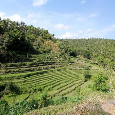 Bali 5104_GF