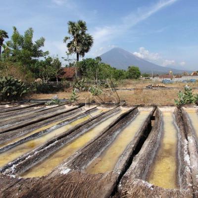 troncs de palmier où s'égoutte le sable mouillé pour obtenir le sel