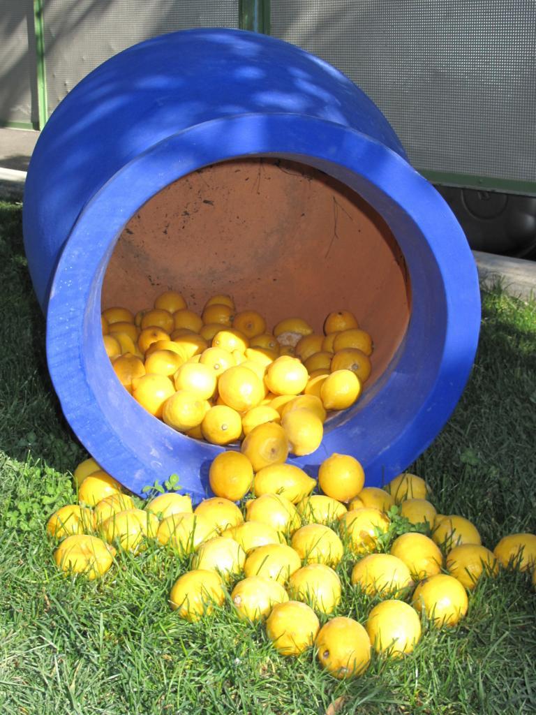 Bleu comme ... la poterie à la fête du citron (Menton)