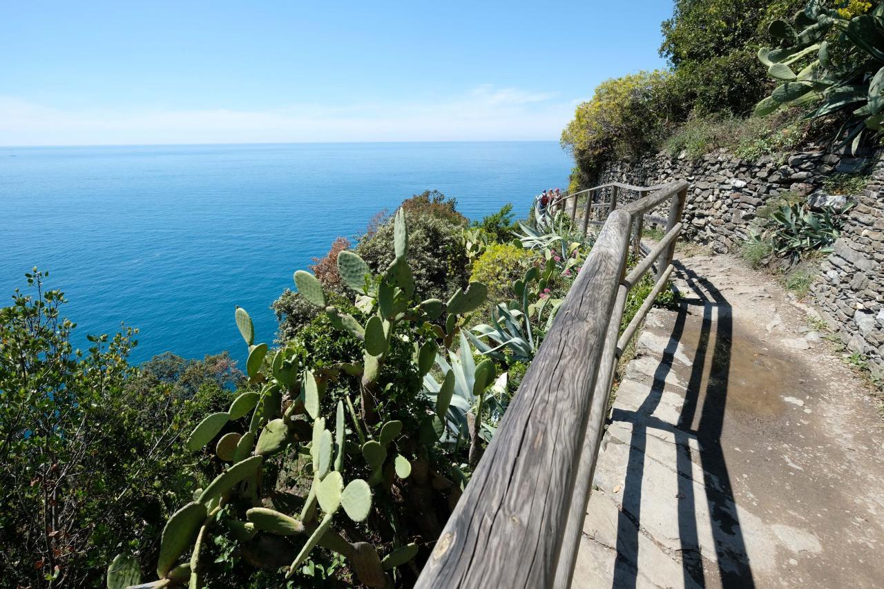 beau panorama sur la Riviera des Cinque Terre