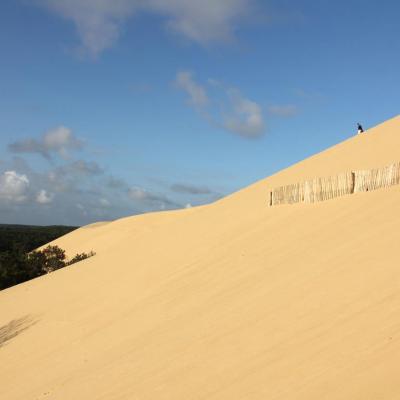La Dune du Pilat (tôt le matin !) la plus grande d'Europe