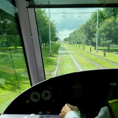 même autour du tram c'est bien vert !!