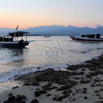 Promenade matinale, il est 6h, le soleil est encore derrière Lombok