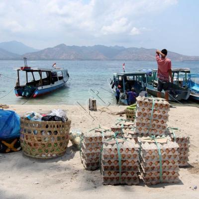 Les provisions et les oeufs en grande quantité arrivent par bâteaux
