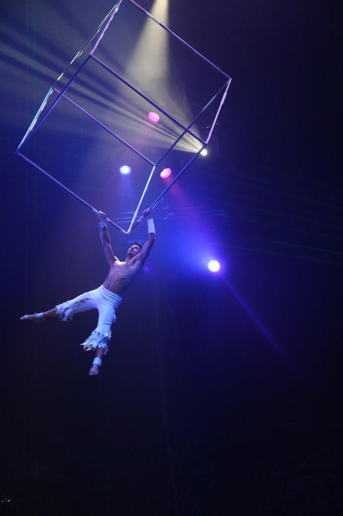 bleu comme ... un numéro de cirque Arlette Gruss