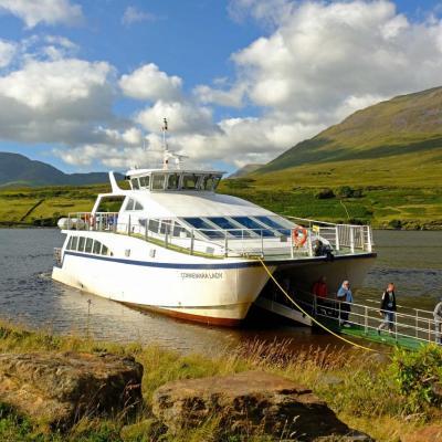 Un circuit d'1h20 environ pour explorer le fjord par la mer…
