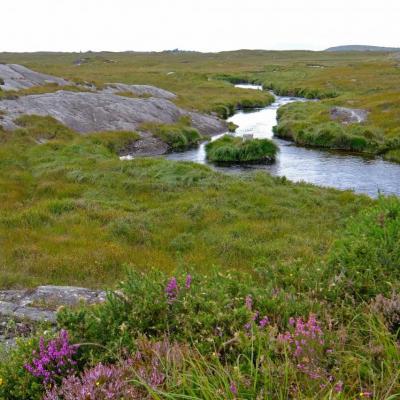 paysage de la Wild Atlantic Way, route côtière balisée la plus longue au monde