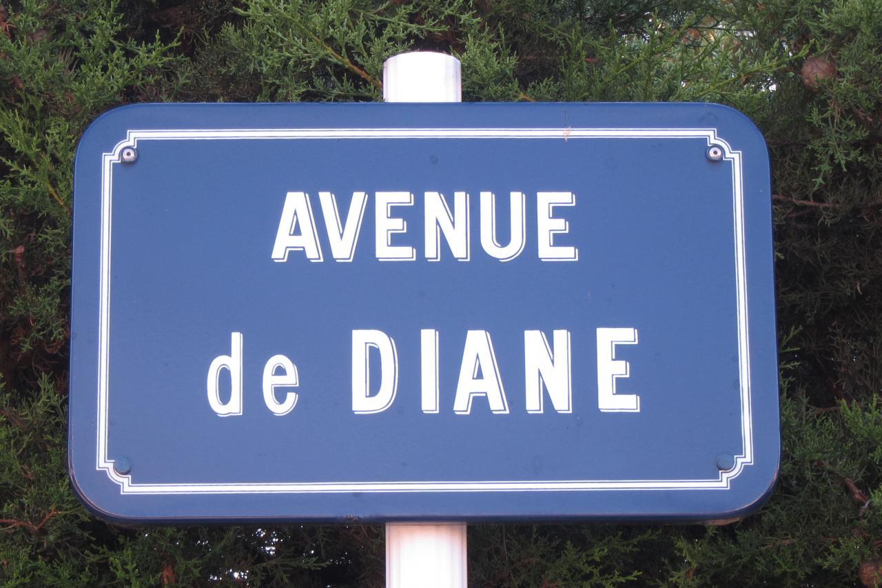 Bleu comme ... l'avenue de Diane ...
