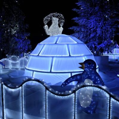 Bleu comme ... les pingouins bleus sur la banquise bleue de Nice...