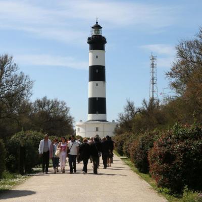 Le phare de Chassiron et la rose de vents à ses pieds - 224 marches