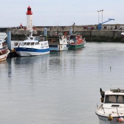 La Cotinière l'unique port de l'île avec une centaine de chalutiers