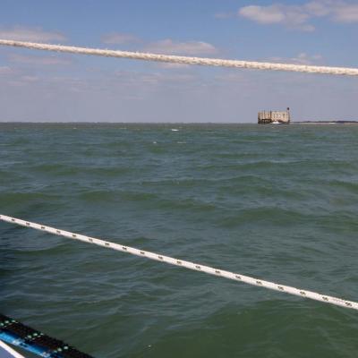 Balade autour de Fort Boyard sur catamaran au départ de Boyardville