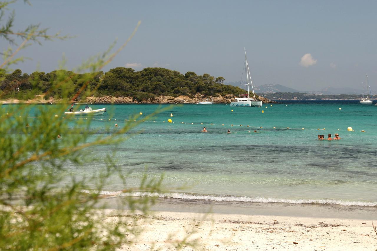 Sable blanc et pinède de la plage d'Argent, la plus populaire de l'Île