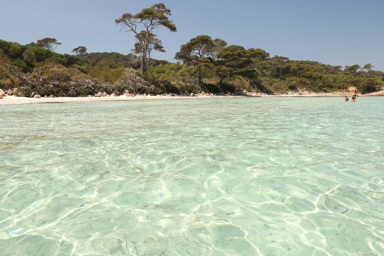 La plage d'Argent, sable blanc et pinède, la plus populaire de l'île