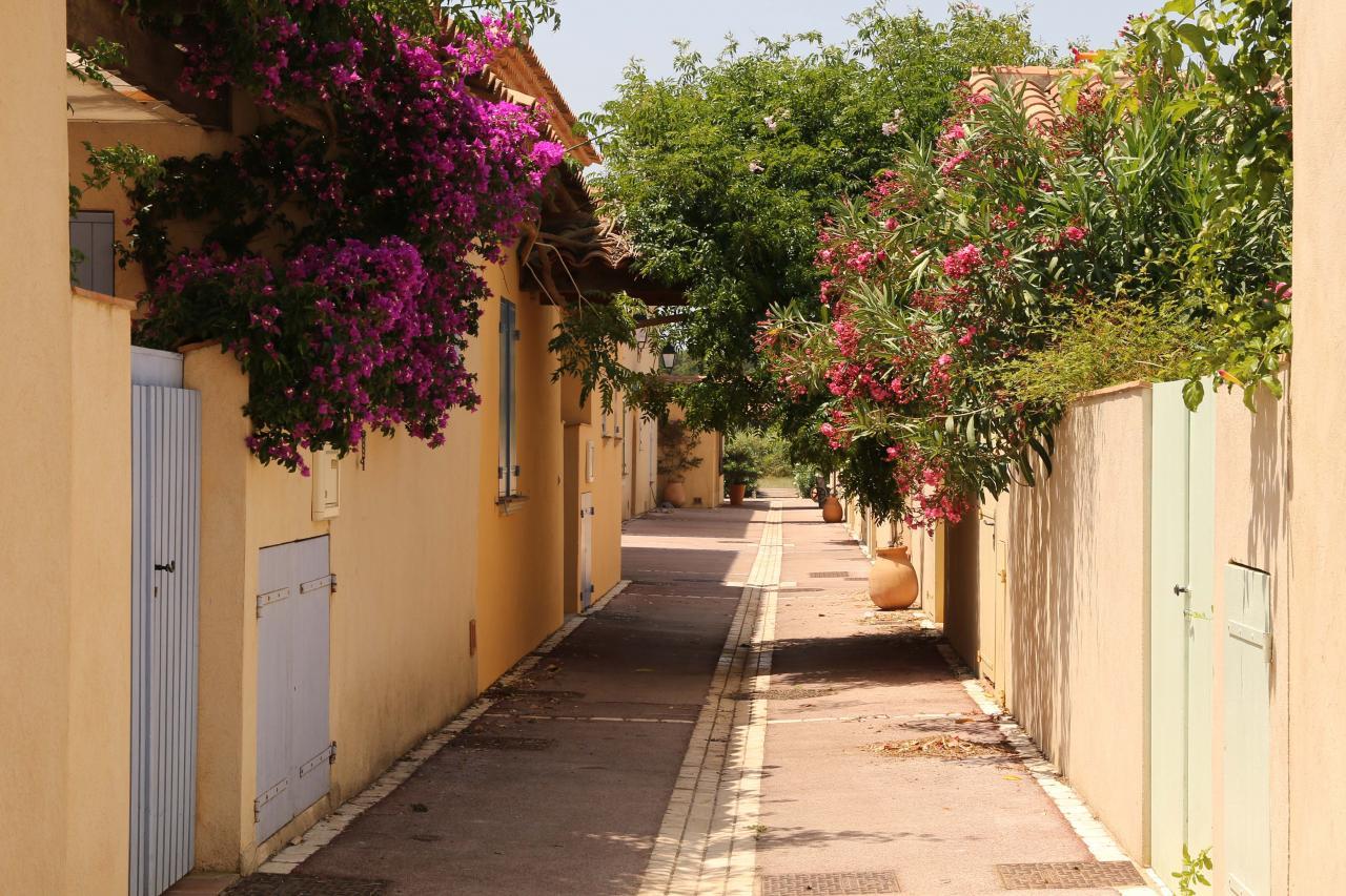 Porquerolles - Le village et ses maisons fleuries