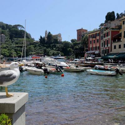 Portofino  (148)