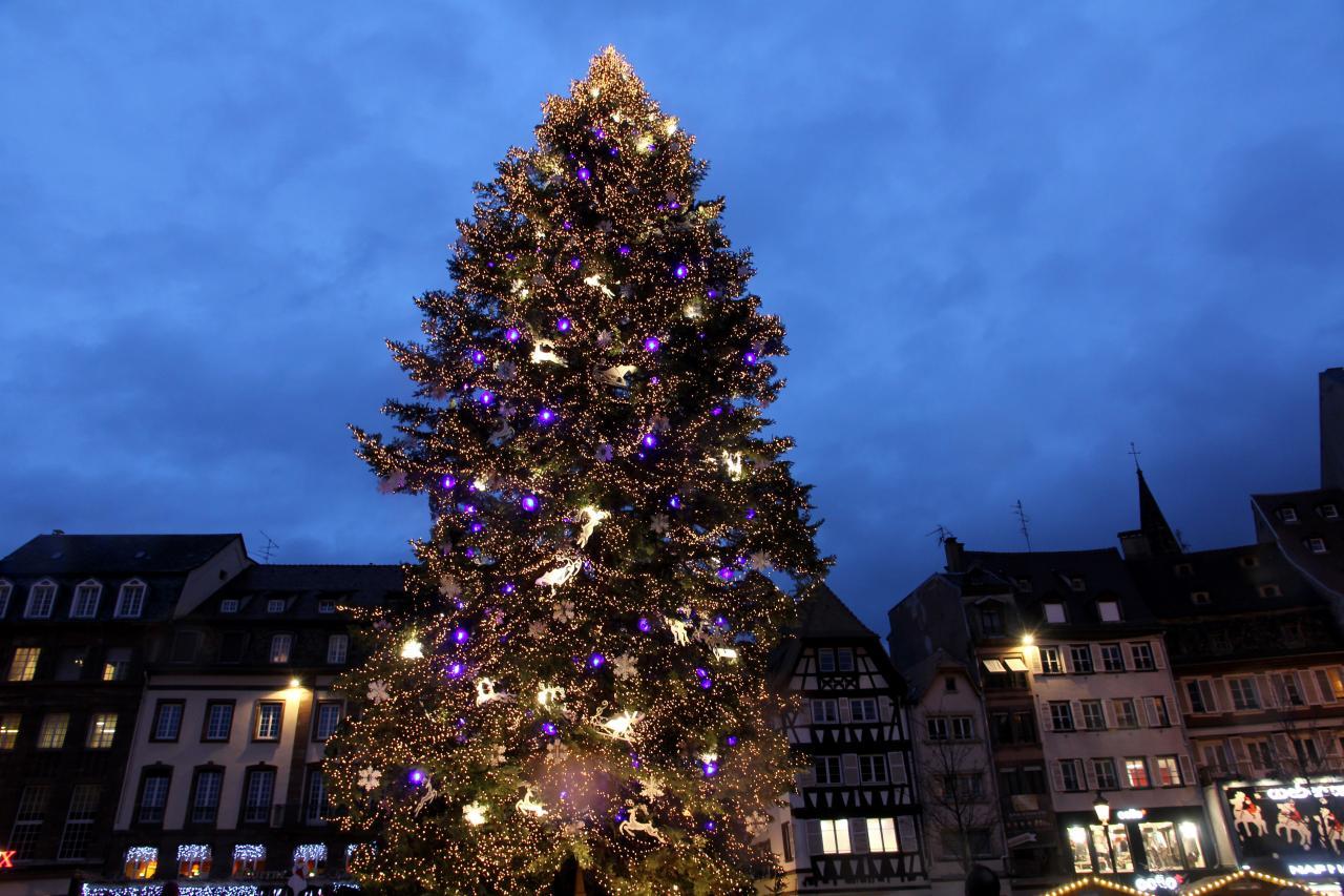 bleu comme ... le plus grand sapin de noël à Stasbourg