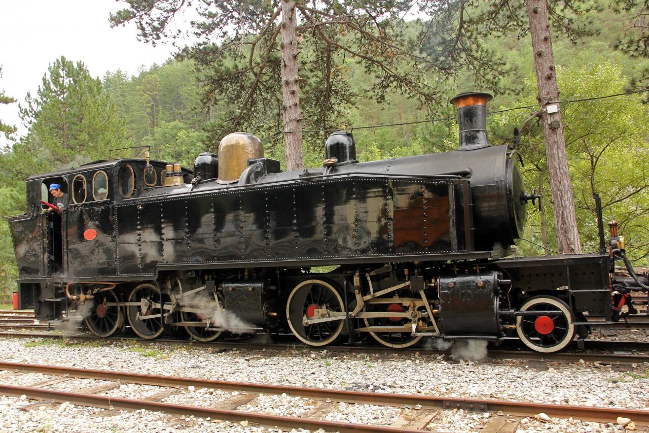 Le train des Pignes à vapeur