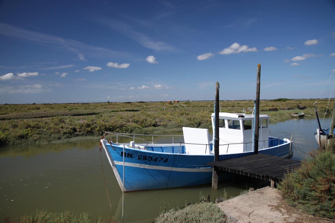 bleu comme ... le bateau de Mornac en Charente Maritime