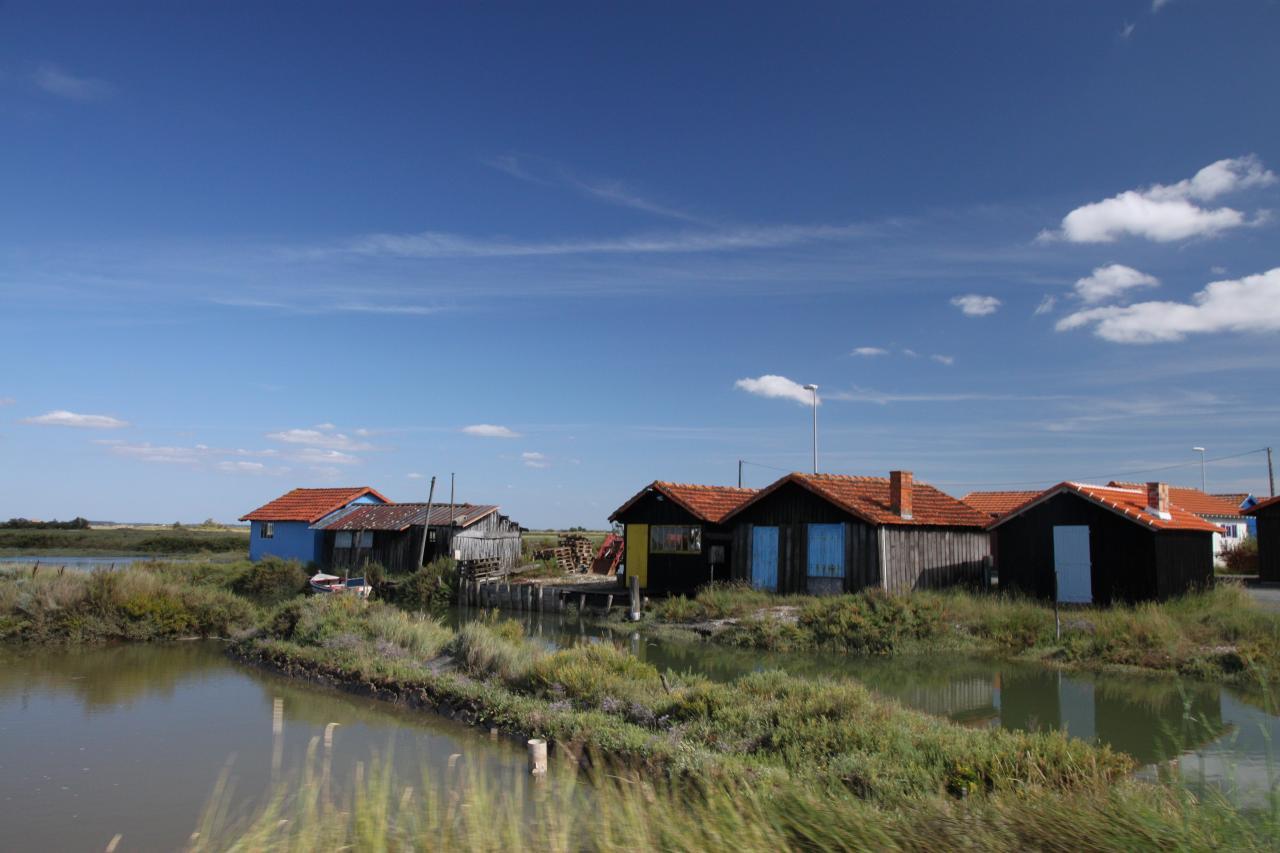 bleu comme ... les cabanes ostréicoles de Mornac