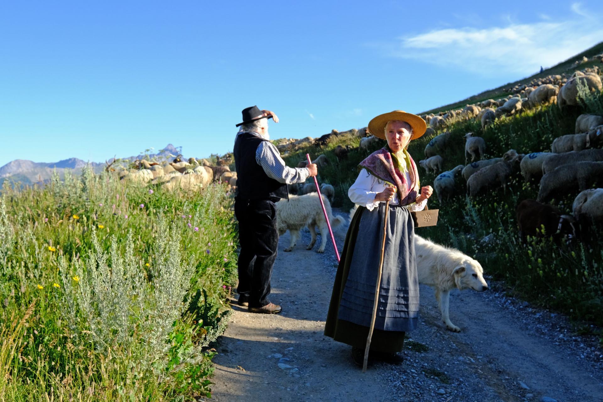 Les bergers de Saint Véran