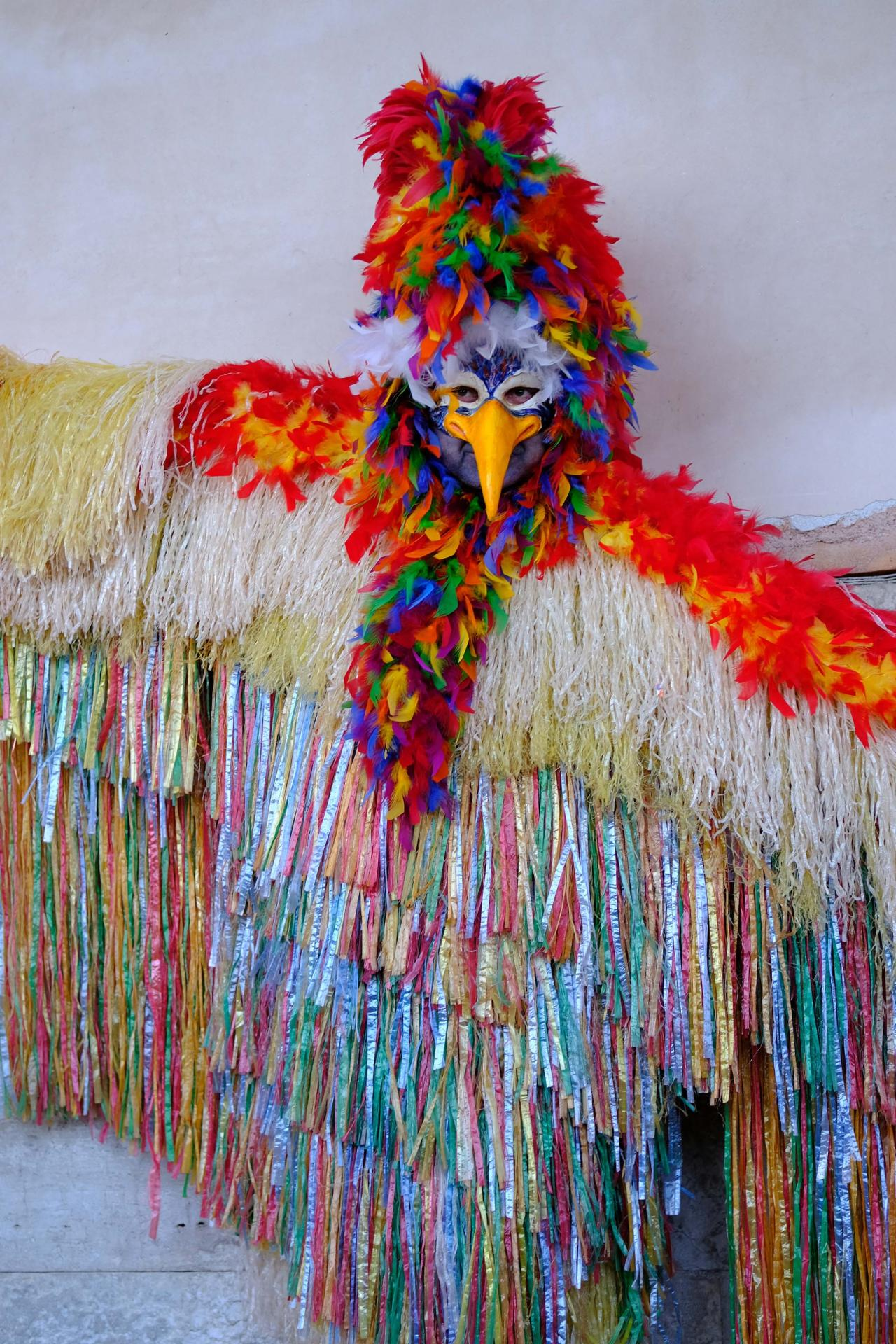 Venise carnaval 1658